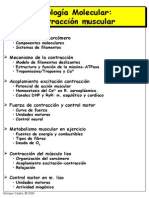 Musculo2004.pdf