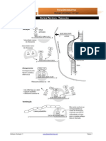 Informativa4 - tradução.pdf