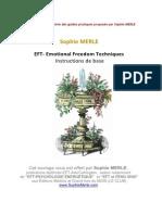 Guide-EFT-en-cadeau.pdf