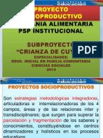 PSP 2014.pptx