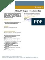 GEOVIA_TrainingCourseOutline_Surpac_Fundamentos_240513_21.pdf