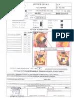 kelly spiner.pdf