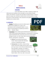 reino vegetal.pdf