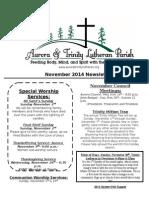 Aurora Trinity Newsletter Nov14 2