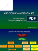 AUDITORIAS AMBIENTALES.ppt