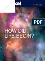 How Did Life Begin?