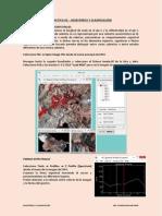 Practica 02 - Muestreos y Clasificación.pdf