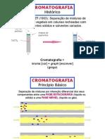 cromatografia coluna consulta 1.pdf