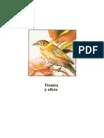 Tecnica y Oficio - tecnica lapices de colores.pdf