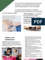 periods of development 3 pptx