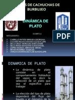 dinmicadelplato11-121021155906-phpapp01