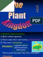13 Plant Kingdom Part One