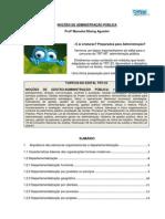 gestão - topicos do concurso.pdf