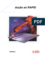 M019 - Manual RAPID.pdf