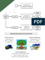 adjetivo organizador grados.docx