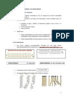 TEMA 3 - LOS LIPIDOS.pdf