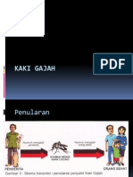 Kaki Gajah.pptx