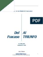 Del Fracaso Al Triunfo