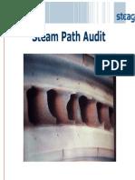 Steam Path Audit of Steam Turbine