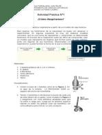 actividad practica respiratorio.doc