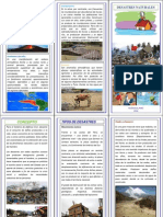 TRIPTICO DESASTRES NATURALES.docx