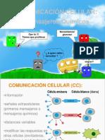 expo biocomunicación celular.ppt