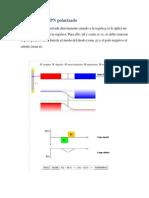 Union P-N.pdf