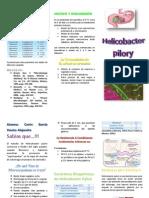 Helicobacter pylori final.docx