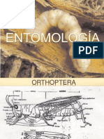 ENTOMOLOGIA paliz 3.ppt