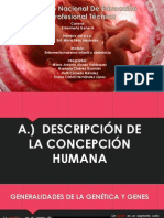 Descripcion de la concepcion humana.ppt