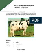 PLAN DE NEGOCIO CHAMACA.docx