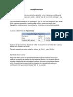 cuenca hidrologica.docx