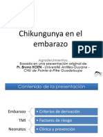 5 CHIKV_Embarazo- transm-vertical.pdf