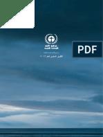 UNEP 2013 Annual Report  (Arabic)