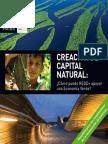 Building natural capital