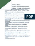 IMPORTANTE ESTUDIO DE LA  JAMAICA.doc