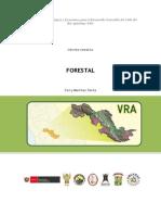 VRAE.pdf