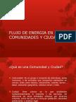 FLUJO DE ENERGIA EN COMUNIDADES Y CIUDADES.pptx