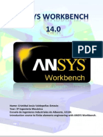 ANSYS WORKBENCH 14