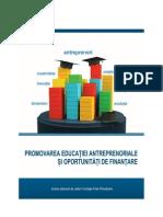 Studiu-Educatie-Antreprenoriala.pdf
