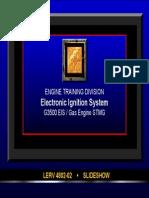 Les 13. Sistema EIS.pdf