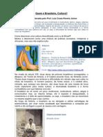Quem é Brasileiro.pdf
