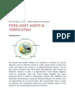 audit project-case study.docx