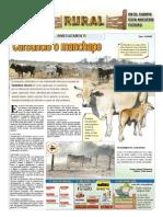 RURAL Revista de ACB Color - 18 NOVIEMBRE 2009 - PARAGUAY - PORTALGUARANI