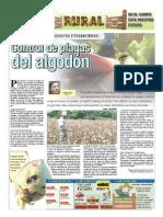 RURAL Revista de ACB Color - 25 NOVIEMBRE 2009 - PARAGUAY - PORTALGUARANI