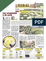 RURAL Revista de ACB Color - 27 OCTUBRE 2010 - PARAGUAY - PORTALGUARANI