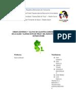República Bolivariana de Venezuela.doc