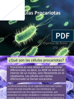 Células Procariotas.pptx
