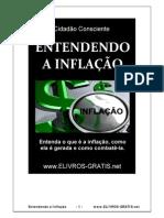 Entendendo a Inflação.pdf