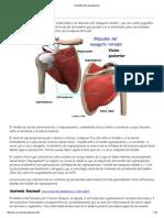 Tendinitis del supraespinoso.pdf